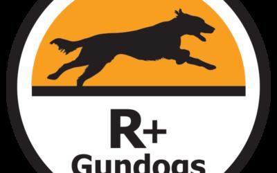 Å gå onlinekurs hos R+Gundogs